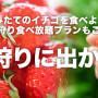 家族三世代で行く!関東でイチゴ狩りができるおすすめホテル特集!2017